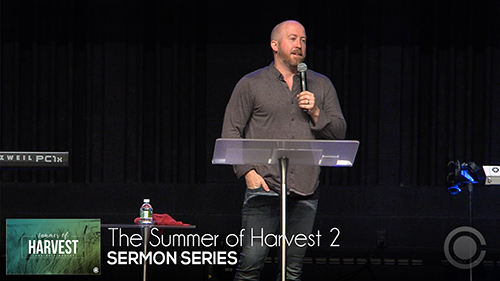 The Summer of Harvest 2
