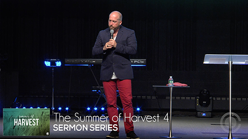 The Summer of Harvest 4