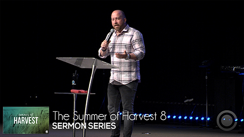 The Summer of Harvest 8