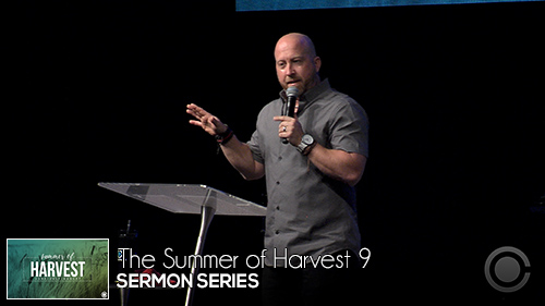The Summer of Harvest 9