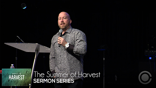The Summer of Harvest