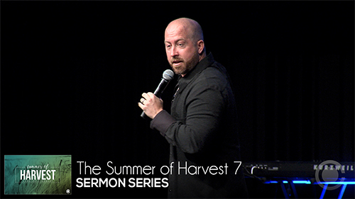 The Summer of Harvest 7